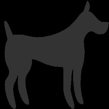 dog_animal_3461